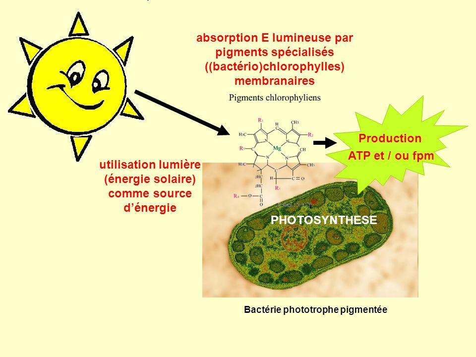 utilisation lumière (énergie solaire) comme source d'énergie