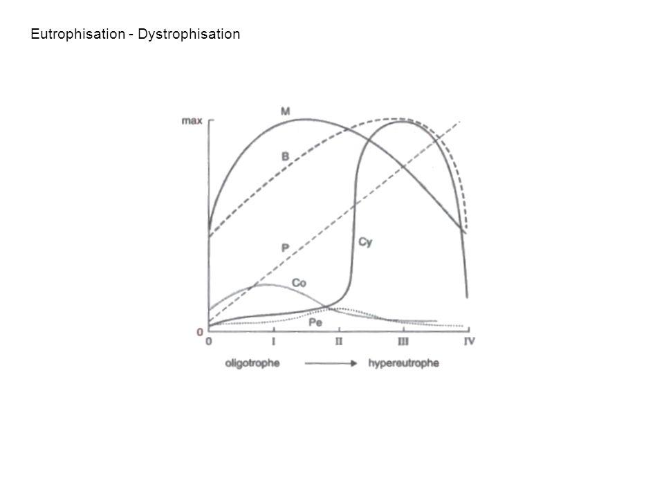 Eutrophisation - Dystrophisation