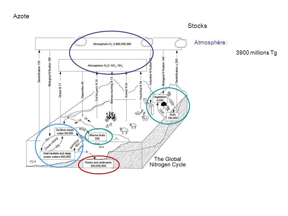 Azote Stocks Atmosphère : 3900 millions Tg Lithosphère :