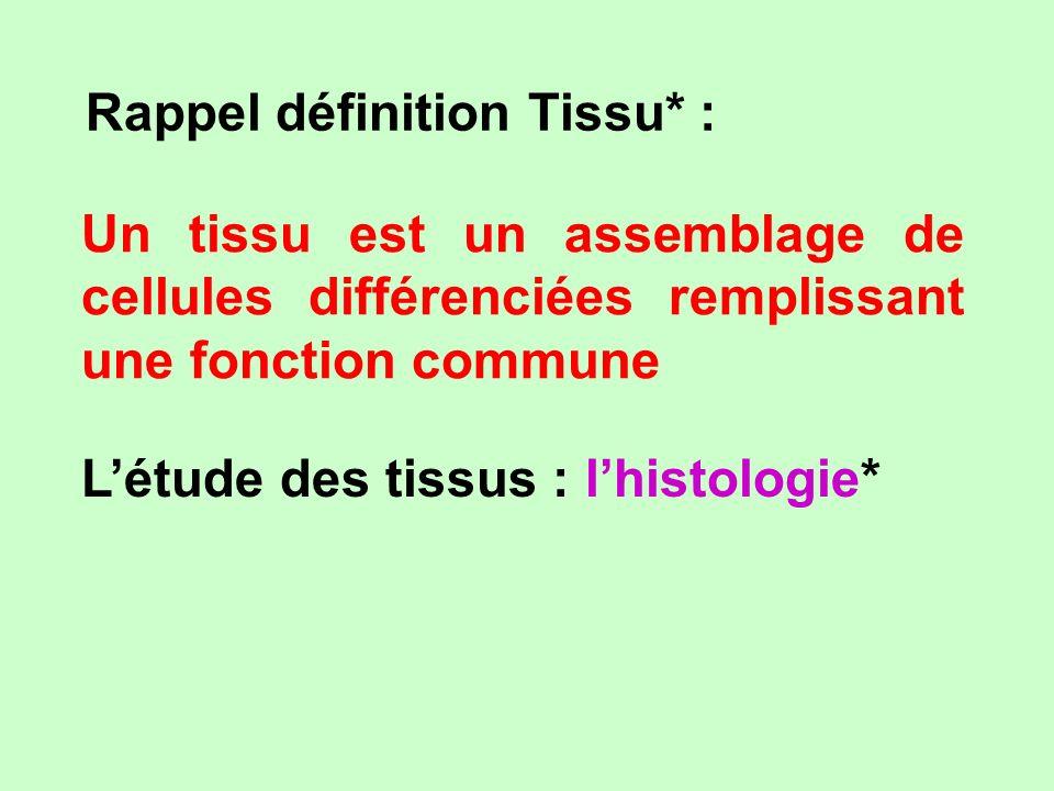 Rappel définition Tissu* :