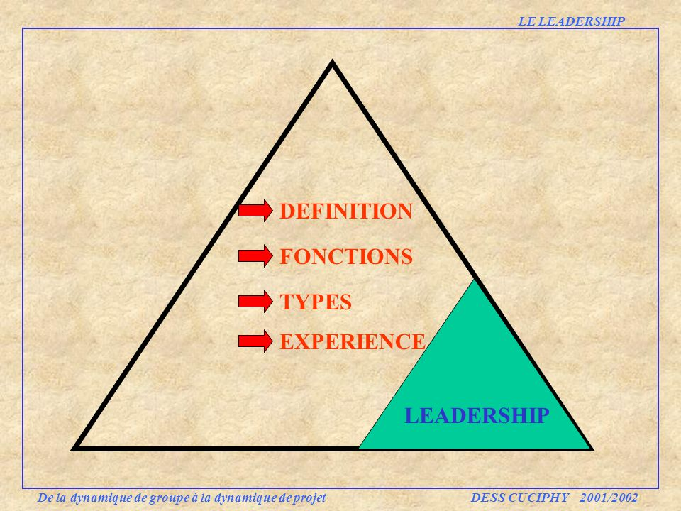 DEFINITION FONCTIONS TYPES EXPERIENCE LEADERSHIP LE LEADERSHIP