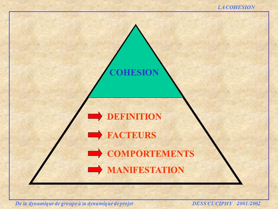 COHESION DEFINITION FACTEURS COMPORTEMENTS MANIFESTATION LA COHESION