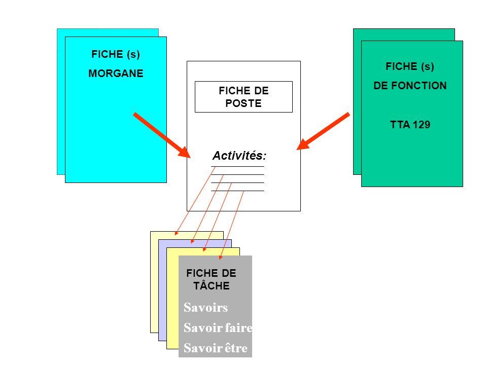 Savoirs Savoir faire Savoir être Activités: FICHE MORGANE FICHE (s)