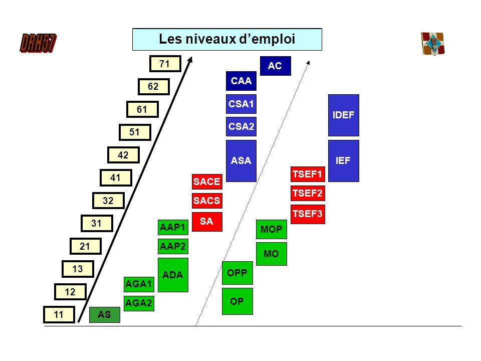 Les niveaux d'emploi 71 AC CAA 62 CSA1 IDEF 61 CSA2 51 ASA IEF 42