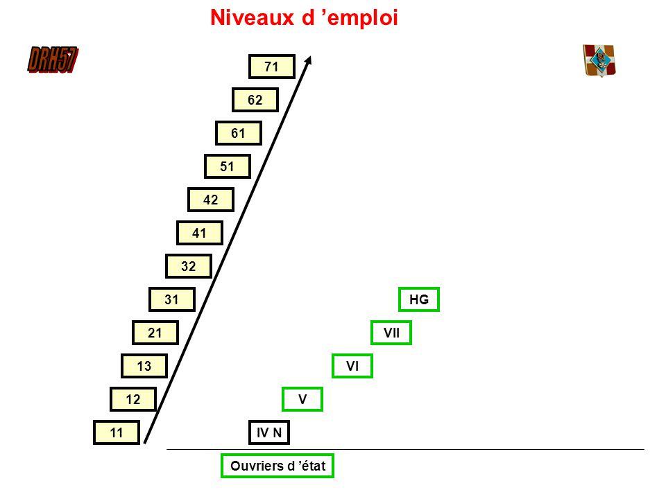 Niveaux d 'emploi 71 62 61 51 42 41 32 31 HG 21 VII 13 VI 12 V 11 IV N
