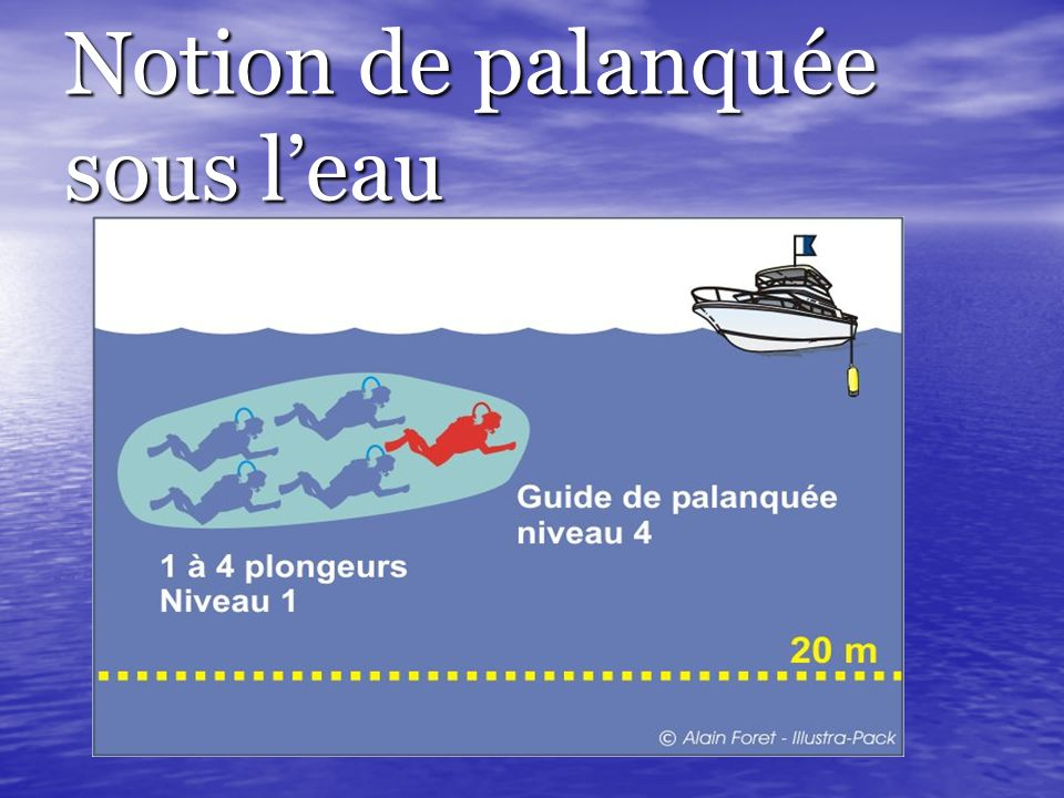 Notion de palanquée sous l'eau
