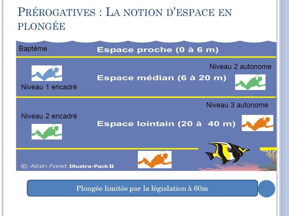 Prérogatives : La notion d'espace en plongée