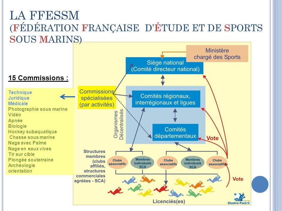 LA FFESSM (FÉDÉRATION FRANÇAISE D'ÉTUDE ET DE SPORTS SOUS MARINS)