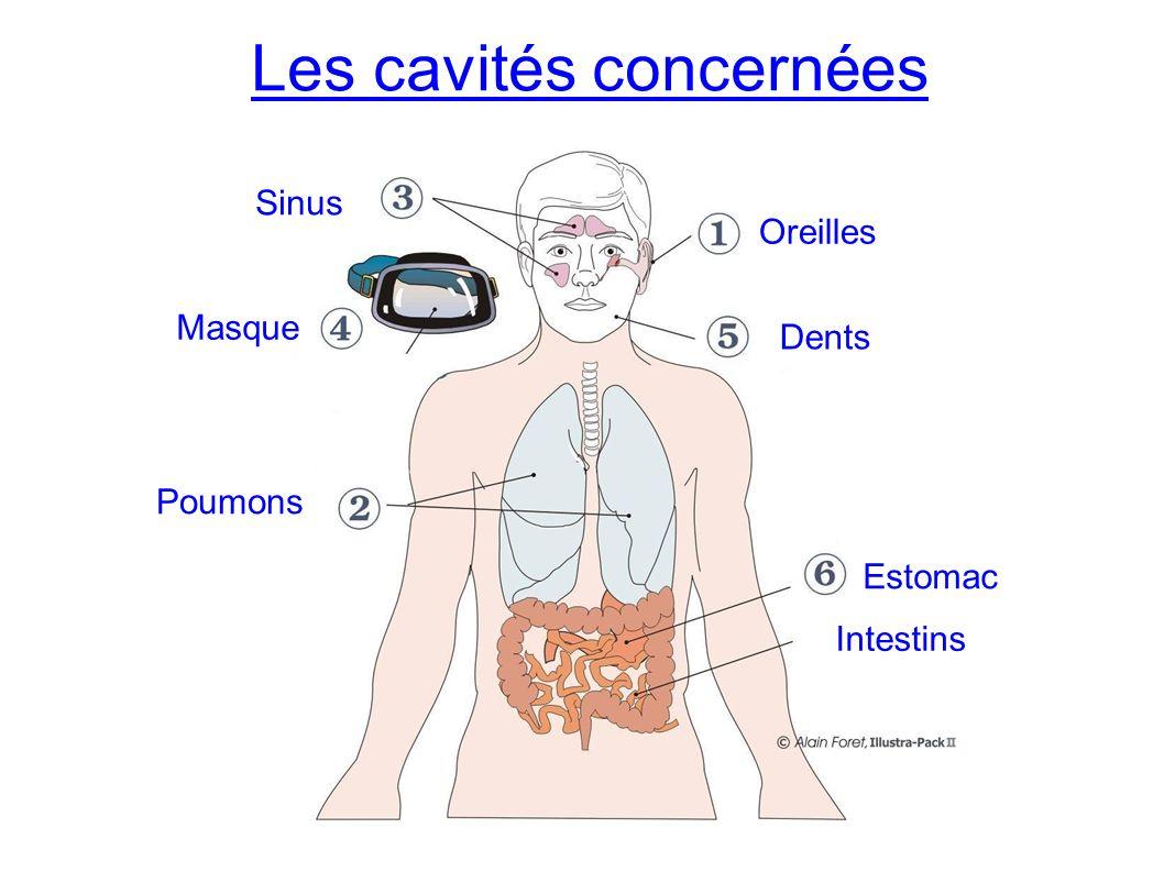Les cavités concernées