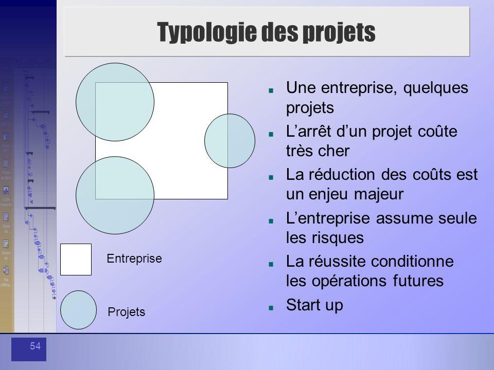 Typologie des projets Une entreprise, quelques projets