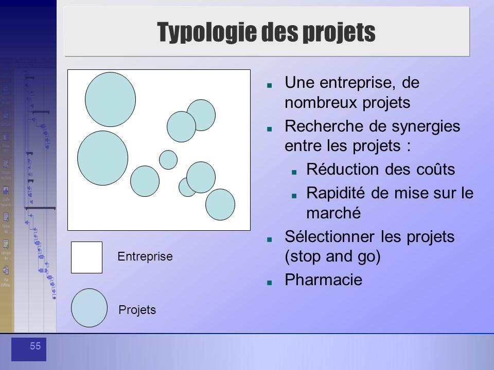 Typologie des projets Une entreprise, de nombreux projets
