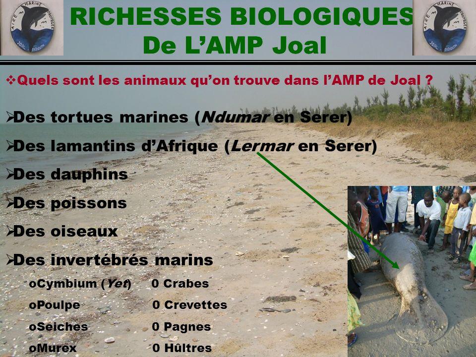 RICHESSES BIOLOGIQUES De L'AMP Joal RICHESSES BIOLOGIQUES