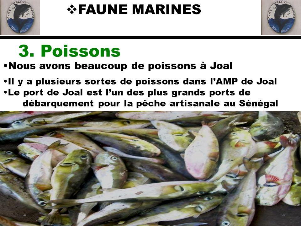débarquement pour la pêche artisanale au Sénégal