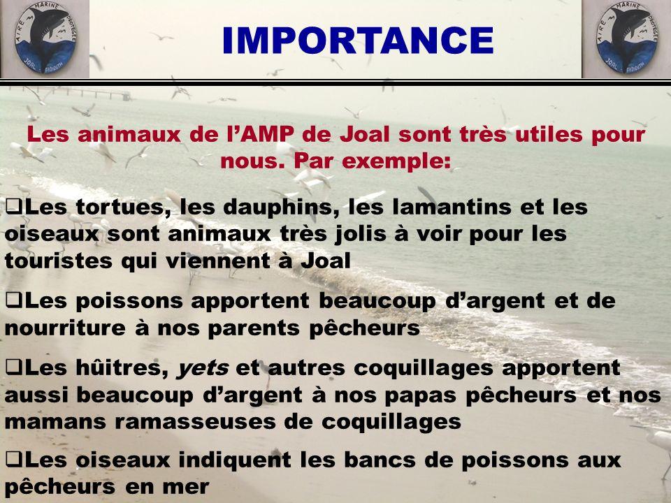 Les animaux de l'AMP de Joal sont très utiles pour nous. Par exemple: