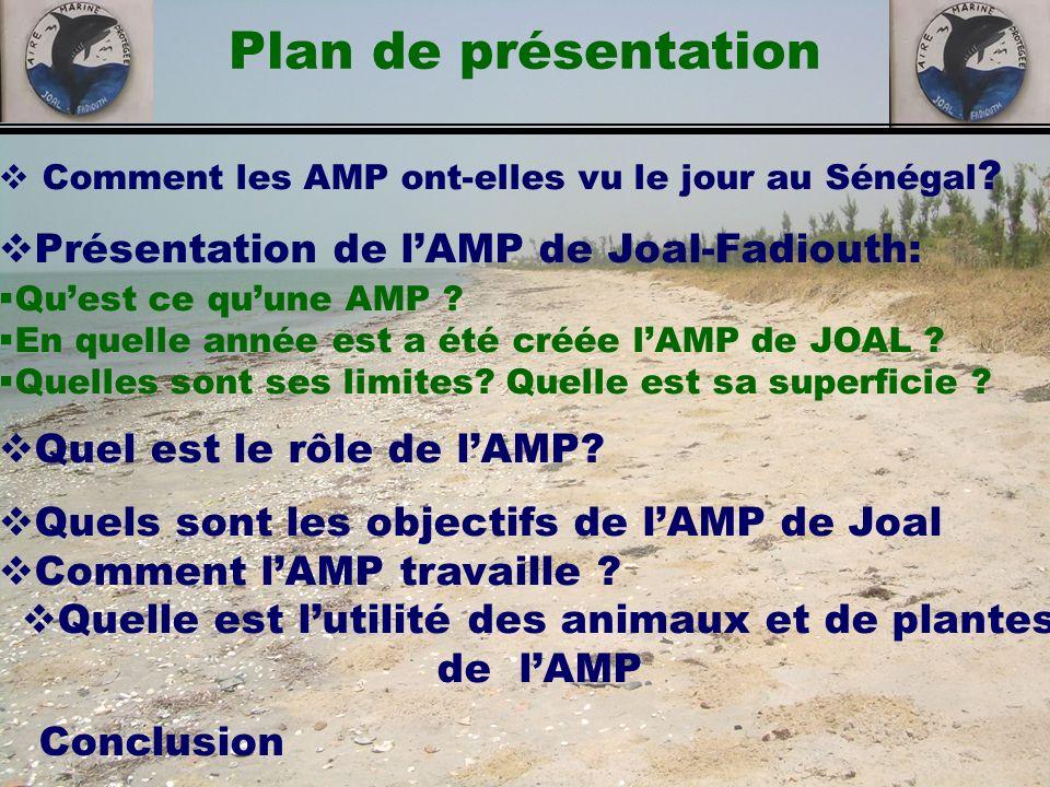 Quelle est l'utilité des animaux et de plantes de l'AMP