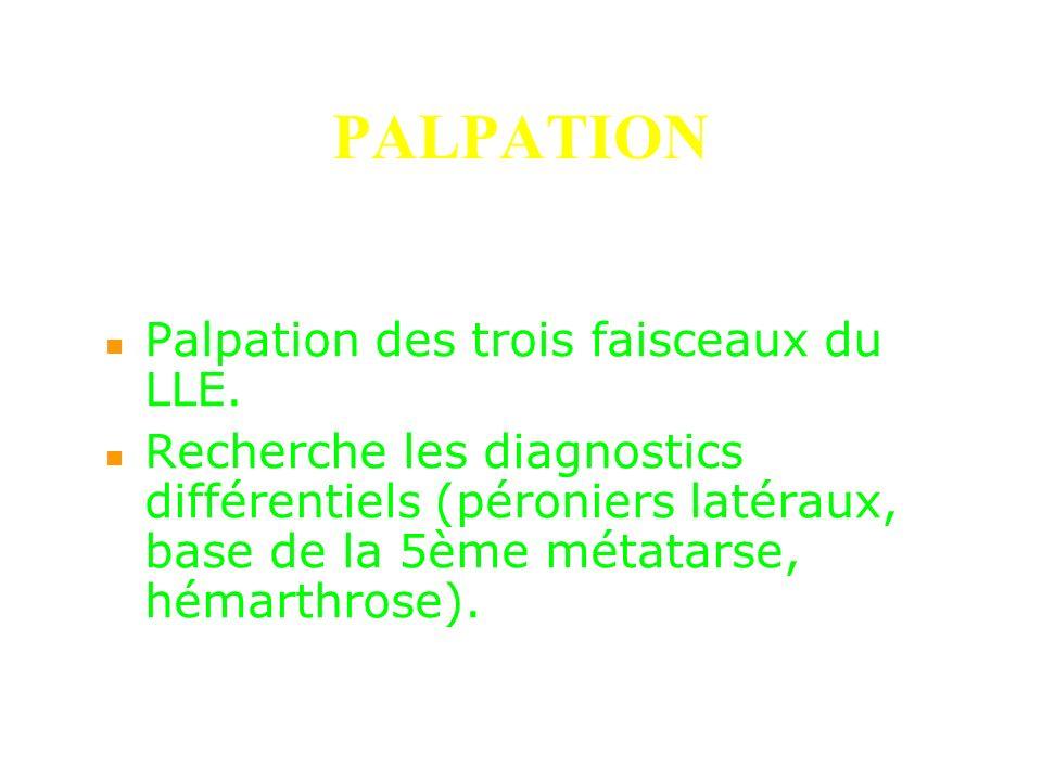 PALPATION Palpation des trois faisceaux du LLE.