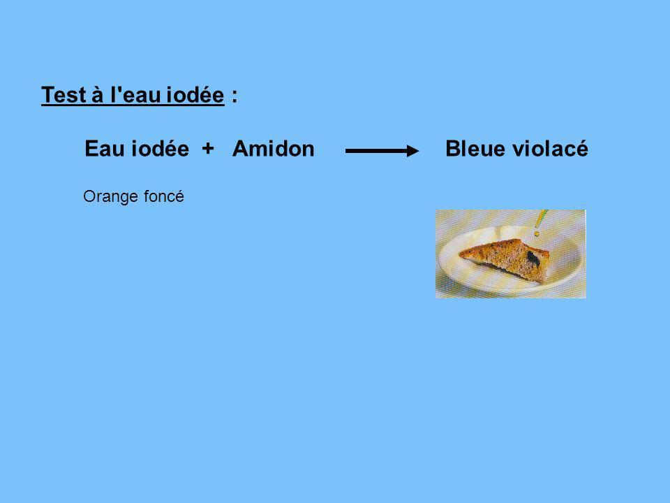 Eau iodée + Amidon Bleue violacé