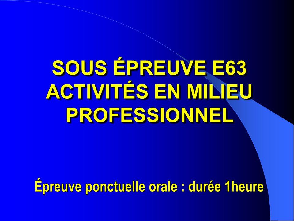 ACTIVITÉS EN MILIEU PROFESSIONNEL