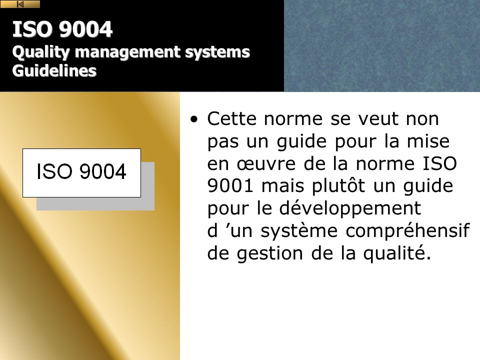 ISO 9004 Quality management systems Guidelines