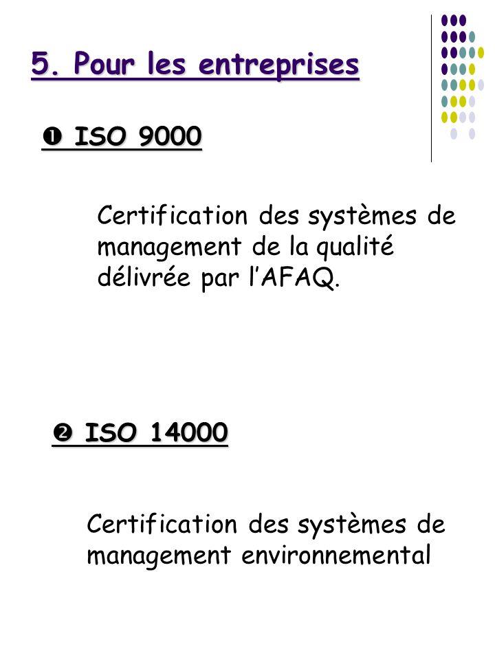5. Pour les entreprises  ISO 9000