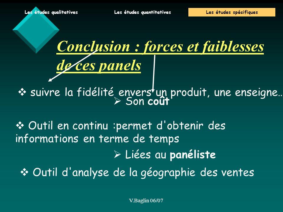 Conclusion : forces et faiblesses de ces panels