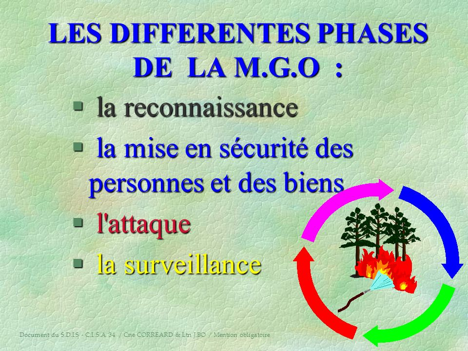 LES DIFFERENTES PHASES DE LA M.G.O :