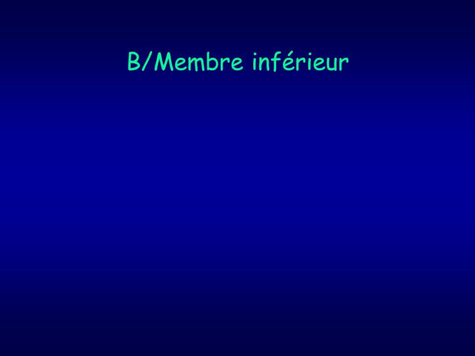 B/Membre inférieur