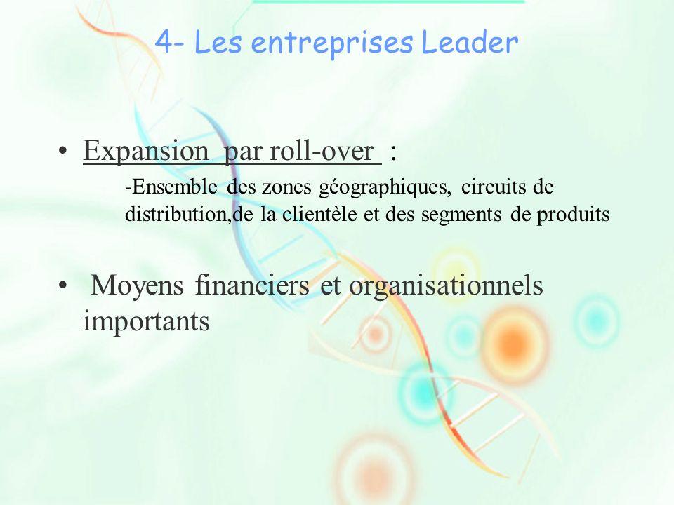 4- Les entreprises Leader