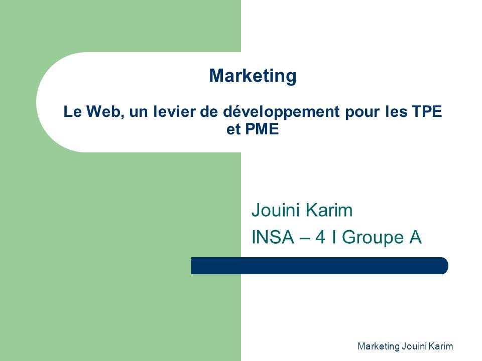 Marketing Le Web, un levier de développement pour les TPE et PME