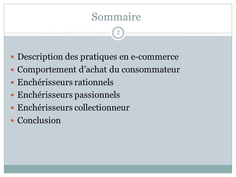 Sommaire Description des pratiques en e-commerce