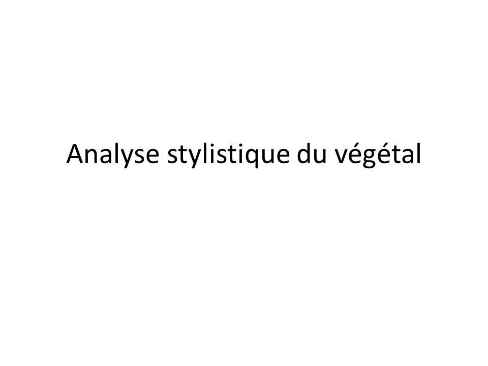 Analyse stylistique du végétal
