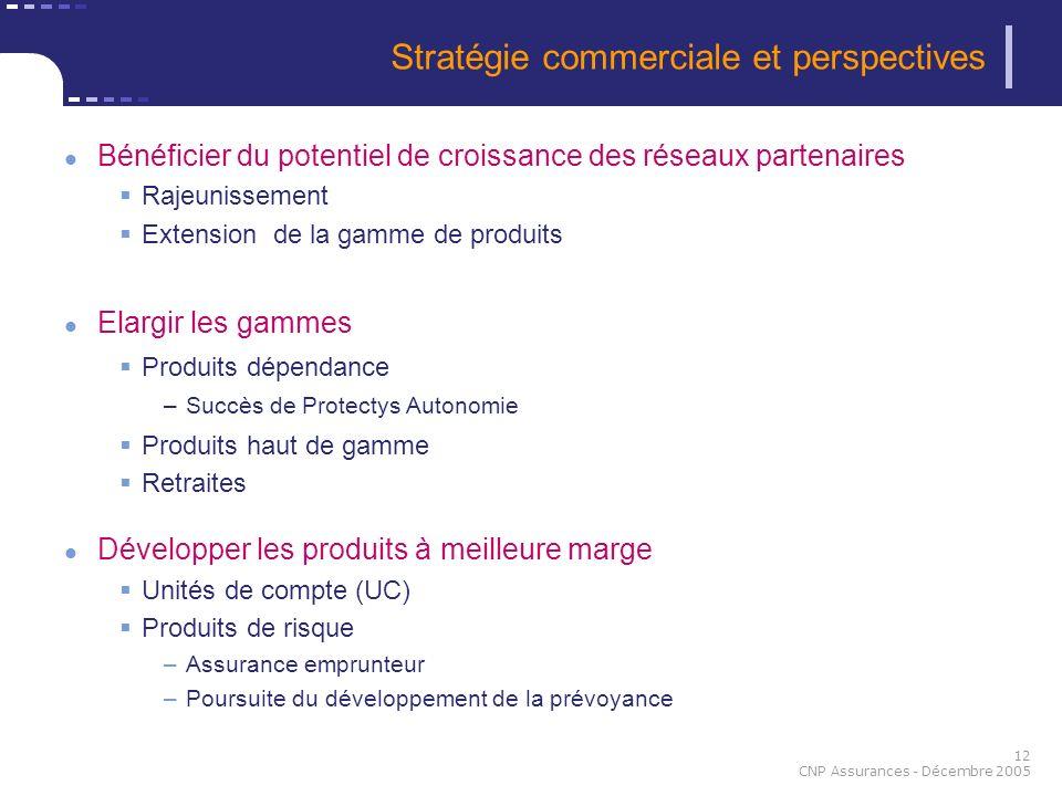 Stratégie commerciale et perspectives