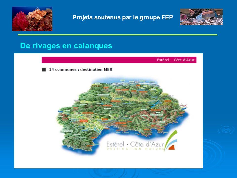 Projets soutenus par le groupe FEP