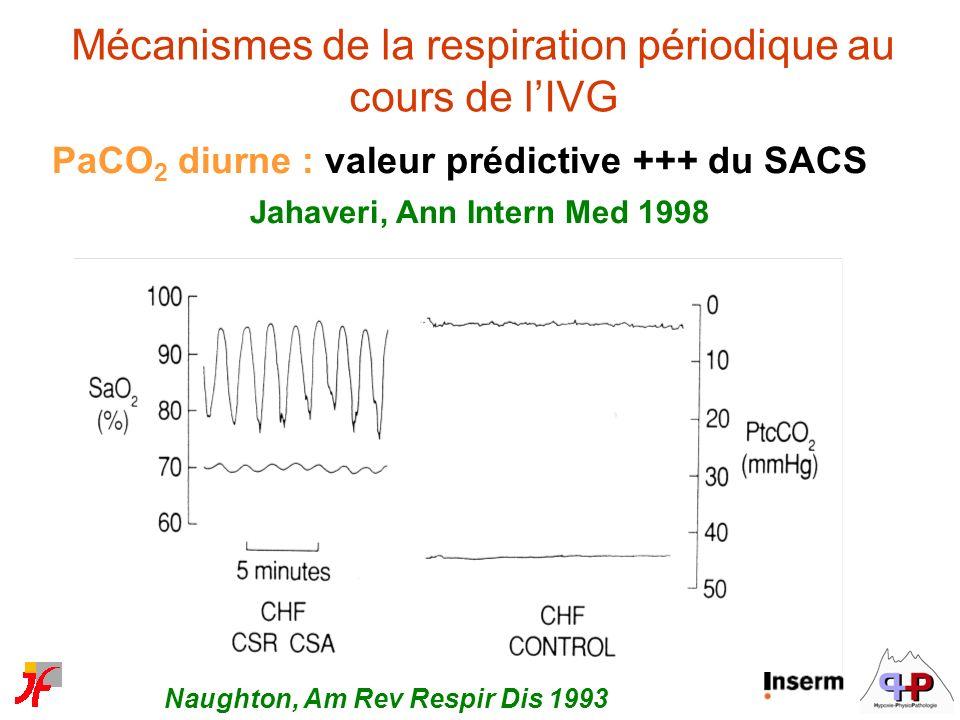 Mécanismes de la respiration périodique au cours de l'IVG