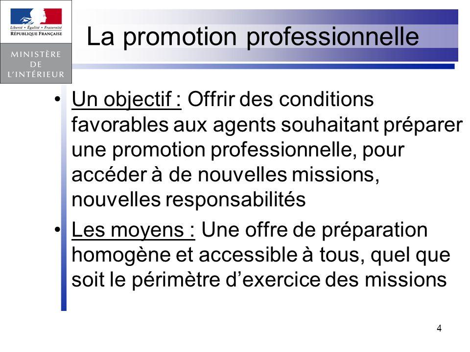 La promotion professionnelle