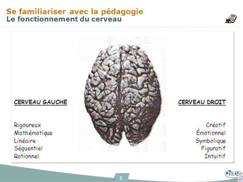Se familiariser avec la pédagogie Le fonctionnement du cerveau