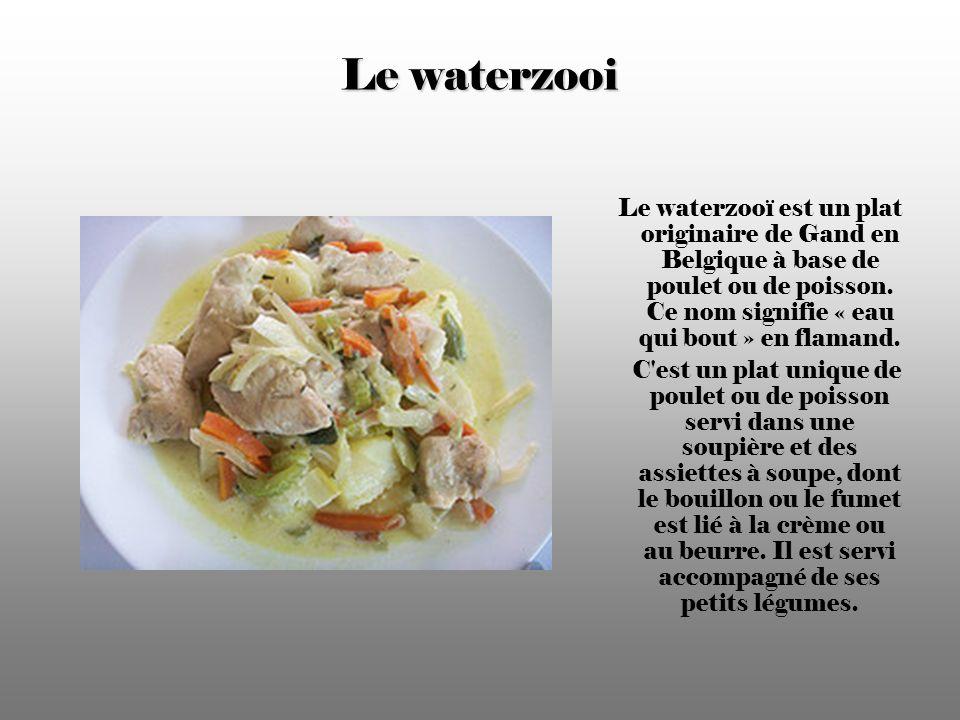 Le waterzooi Le waterzooï est un plat originaire de Gand en Belgique à base de poulet ou de poisson. Ce nom signifie « eau qui bout » en flamand.
