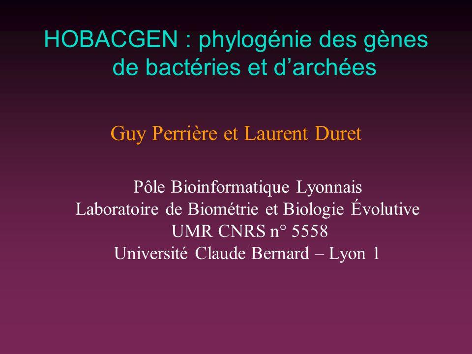HOBACGEN : phylogénie des gènes de bactéries et d'archées