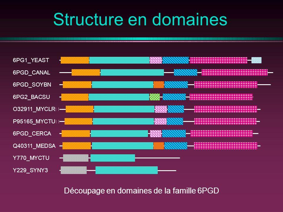 Structure en domaines Découpage en domaines de la famille 6PGD