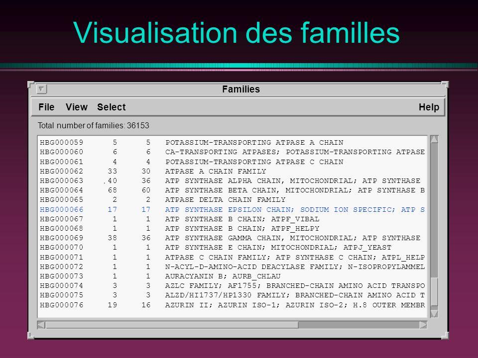 Visualisation des familles
