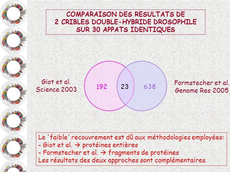 COMPARAISON DES RESULTATS DE 2 CRIBLES DOUBLE-HYBRIDE DROSOPHILE