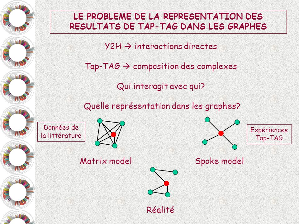 Y2H  interactions directes Tap-TAG  composition des complexes