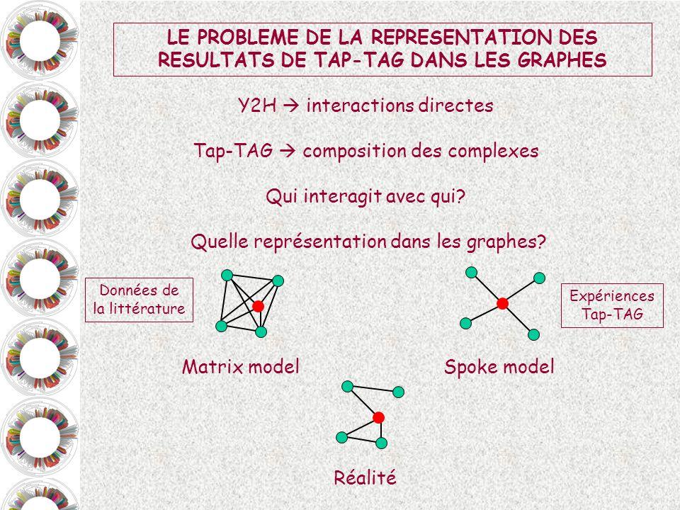 Y2H  interactions directes Tap-TAG  composition des complexes
