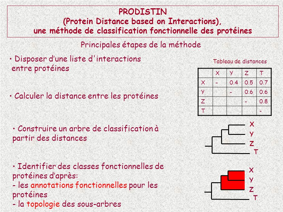 (Protein Distance based on Interactions),