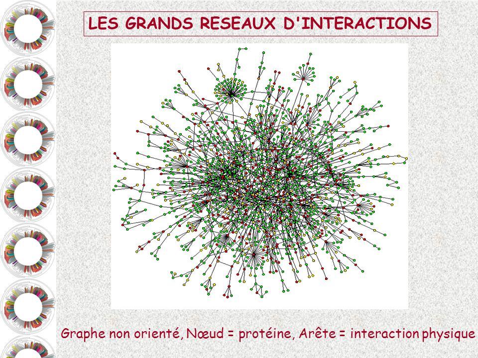 LES GRANDS RESEAUX D INTERACTIONS