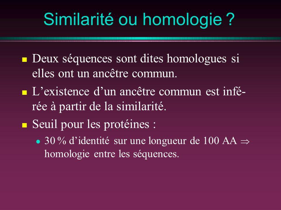 Similarité ou homologie
