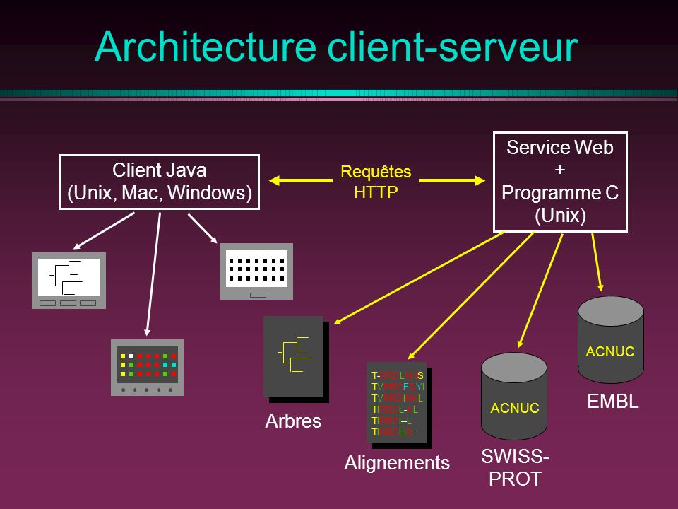G nomique comparative ppt t l charger for Architecture client serveur