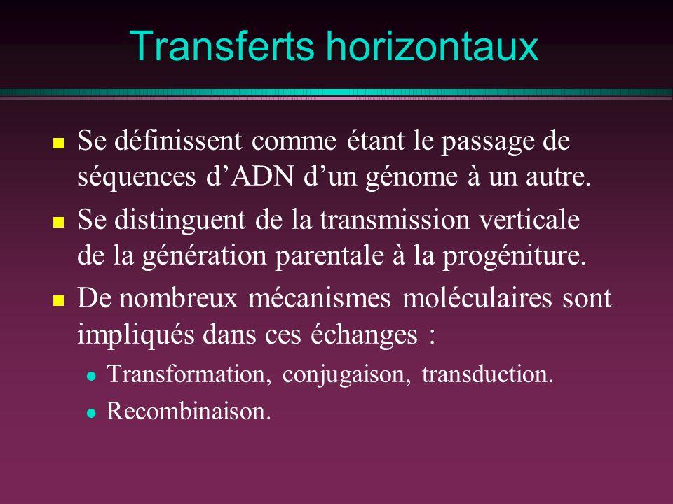 Transferts horizontaux