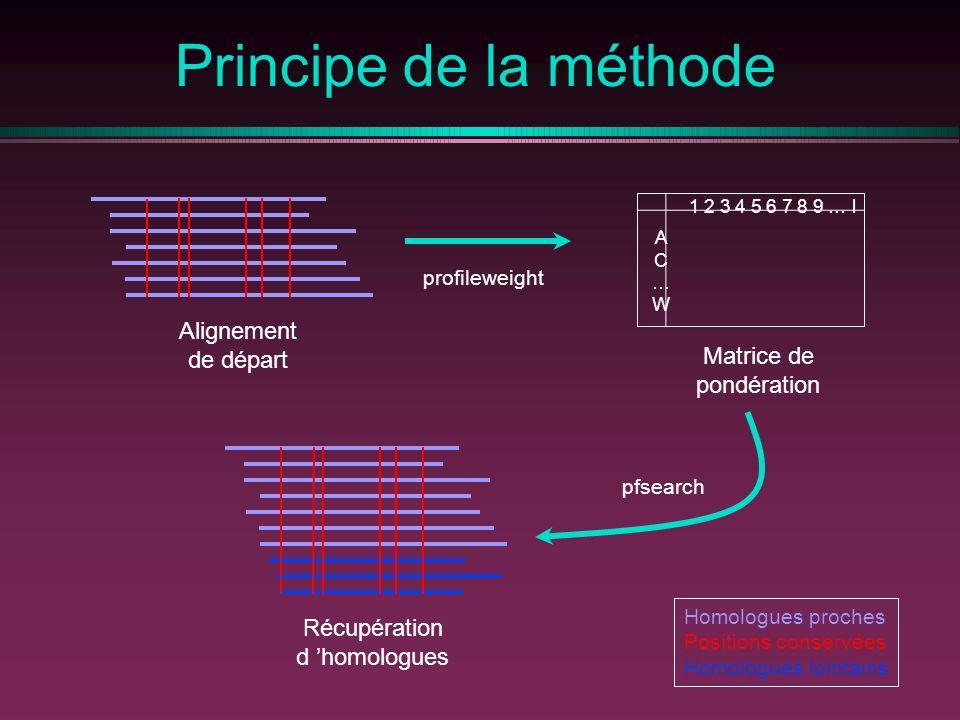 Principe de la méthode Alignement de départ Matrice de pondération