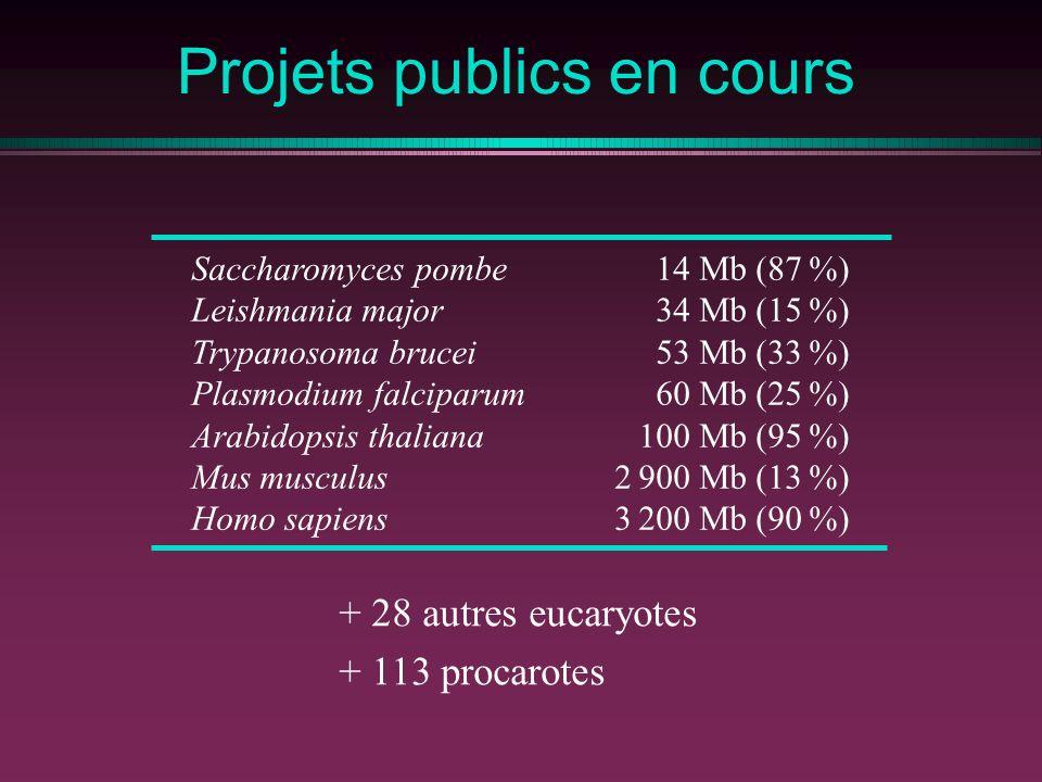 Projets publics en cours